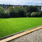 large grass garden